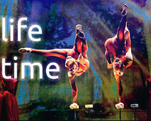 "Gymmotion ""life time"""
